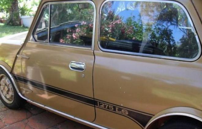 1275LS Side image nugget Gold stripes.png