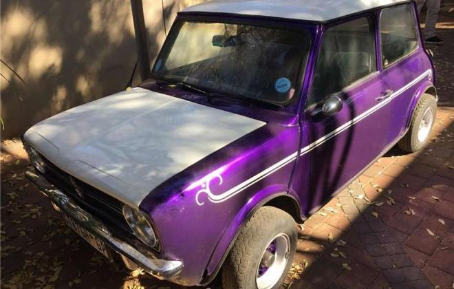 1979 Meyland Mini GTS purple south africa (3).jpg
