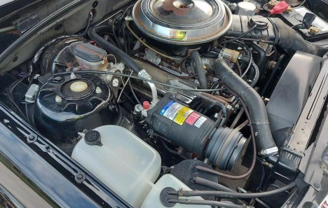 1980 VC Holden Commodore HDT Tuxedo Black V8 manual (20).jpg