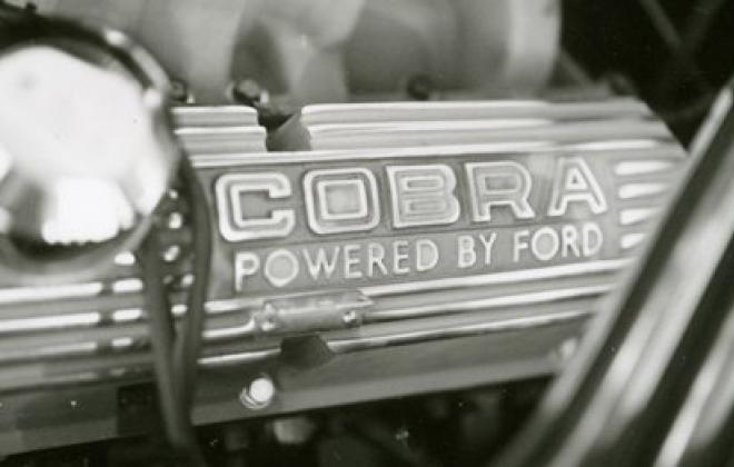 2965 GT 350 shelby valve cover.jpg