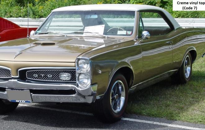 Creme vinyl roof 1967 GTO.jpg