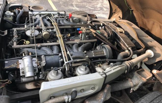 E type series 3 V12 engine.jpg
