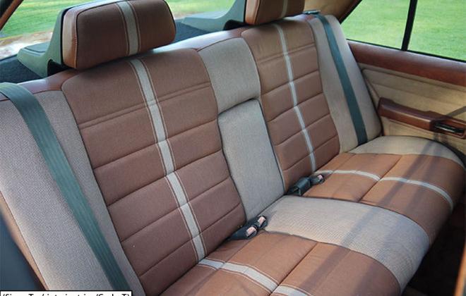 Ford XE Fairmont Ghia ESP Sierra Tan interior trim (3).png