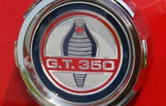 GT350 rear badge.jpg