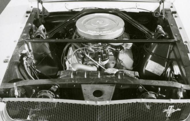 GT350 standard engine bay 2.jpg