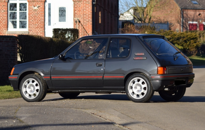 Graphite Grey 205 GTI Phase 1.png