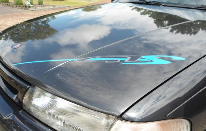 HAV GTS VP 1992 bonnet front sticker decal GTS.JPG