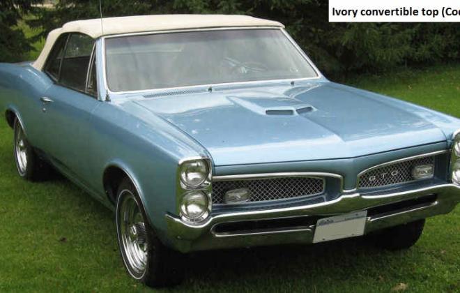 Ivory convertible top 1967 GTO 3.jpg