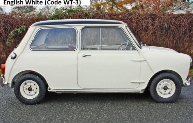 MK1 Old English White 1.jpg