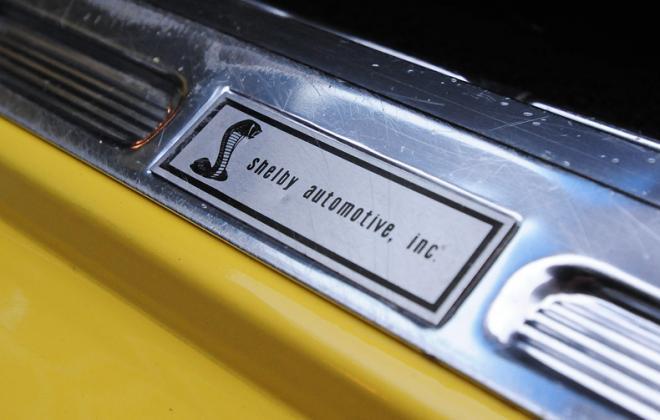 Mustang GT500KR convertible interior trim (6).JPG