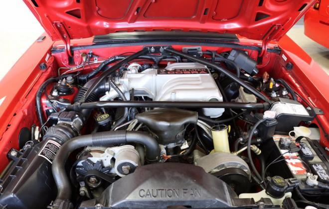 Mustang SVT Cobra R Red images register (17).jpg