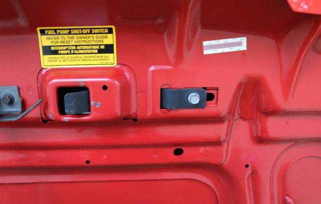 Mustang SVT Cobra R Red images register (6).jpg