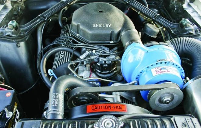 Paxton Supercharger GT 350.jpg