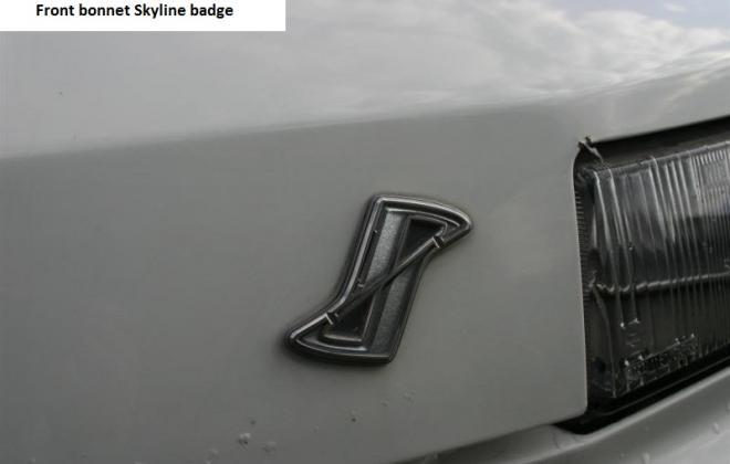 RS X Turbo C Skyline badge.jpg