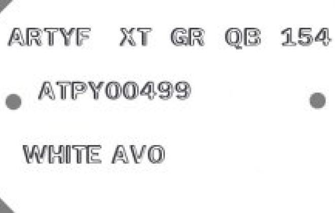 RS2000 AVO plate.jpg