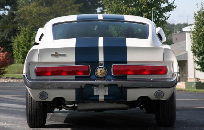 Rear Shelby GT 500.jpg