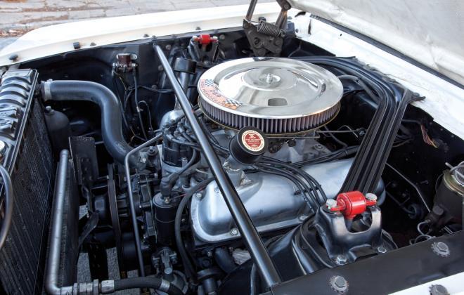 Shelby GT 350R.jpg