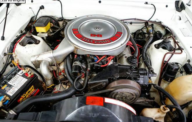 XD ESP 351ci V8 engine bay (4).png