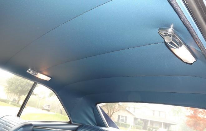 blue roof linning.jpg