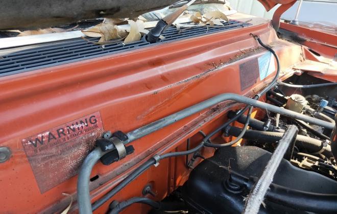 1982 Chestnut Red XE Fairmont Ghia for sale images (6).jpg