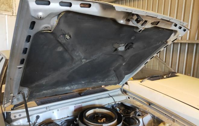 z 1982 XE ESP engine 4.9 302 images classicregister.com (4).jpg